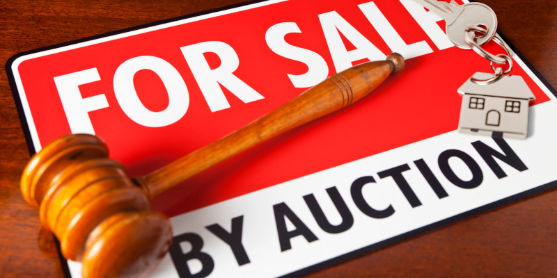 County Sales Auction in Western North Carolina